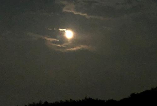 は です 綺麗 ね 今夜 が 月