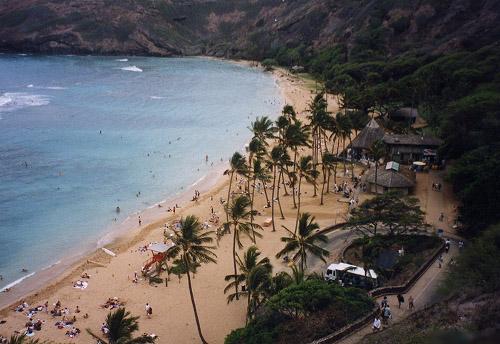 ハワイ シュノーケリング