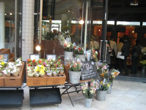 花屋さんでは、春らしい花が店先を飾っています