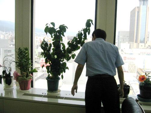 2005年の父の日