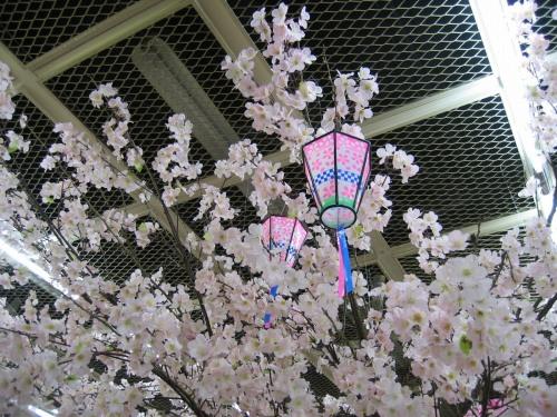 神戸三宮さんプラザ地下に咲く桜の樹