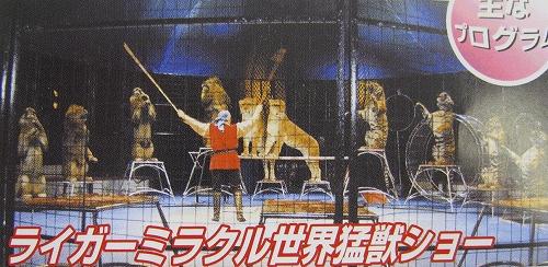 木下大サーカス神戸公演