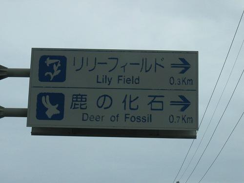伊江島「鹿の化石跡」