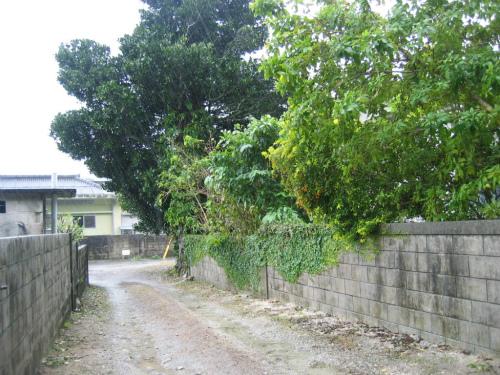 沖縄県名護市辺野古地区