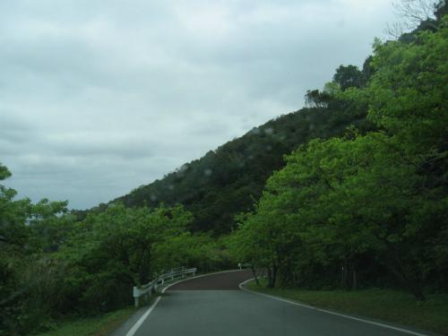 沖縄の恩納村は、今新緑のシーズン