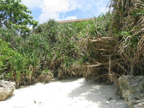 沖縄ムーンビーチ