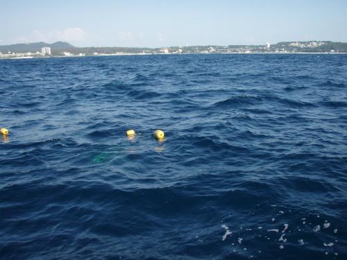 沖縄でシーラ漁