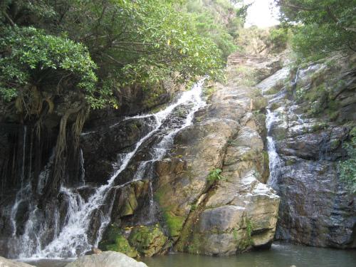 沖縄海岸国定公園運天森園地