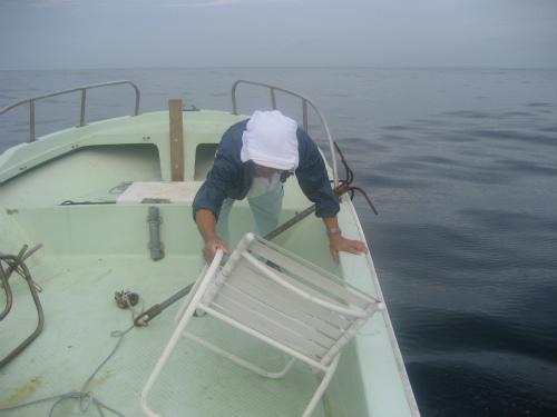 船がよく揺れます