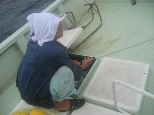 恩納村沖で魚釣り