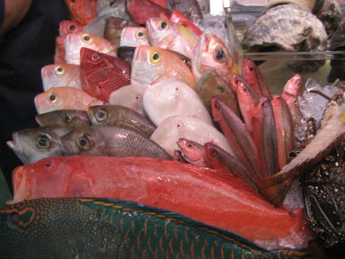 市場の魚売り場には、沖縄らしい鮮やかな魚が並んでいます