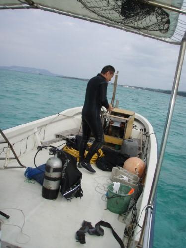 片山さんが、袋一杯のテラジャー(巻貝)を採ってきました