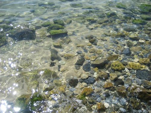 アメリカ軍キャンプのすぐ隣にあるダイビングスポットの海水はとても綺麗です