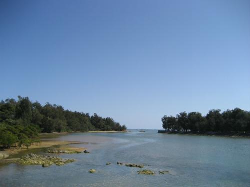 車を川岸に止めて、川の岸に入って行ってみました