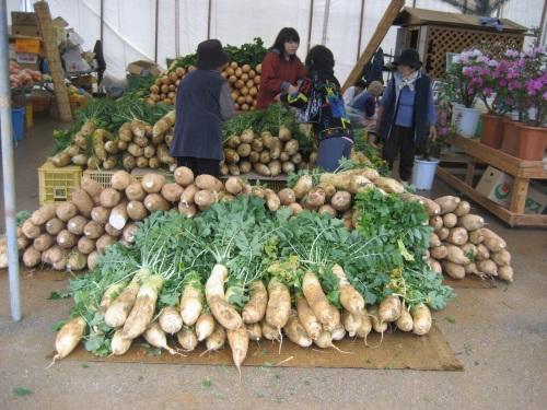 大宜味村の道の駅「おおぎみ」では、たくさんの野菜が売られています
