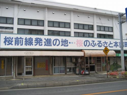 本部町は、日本列島の桜前線の発祥の地と言われています