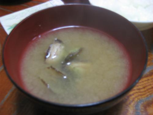 冨着絹子さんが作ってくれた、貝(テラジャー)の味噌汁が美味しかったです