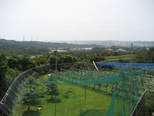 農作業場に作っている建物の2階から見る景色は素晴らしい景色です