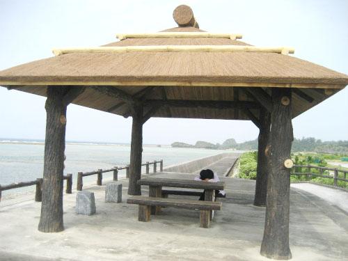 真栄田漁港に行って、海ブドウの養殖場を見てきました