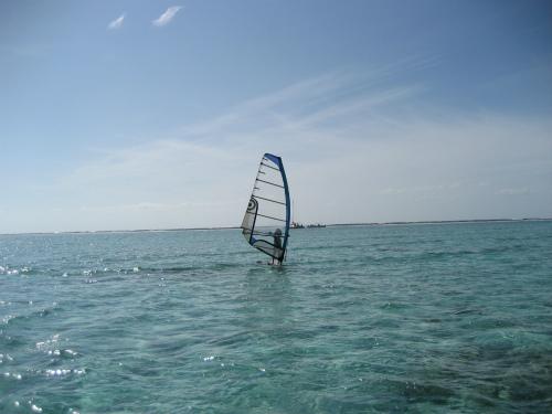 ウインドサーフィンなどのマリンスポーツをしている人もたくさんいます