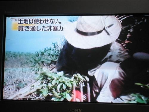 「かんなタラソ沖縄」で買った、宜野座産トマトの桃太郎
