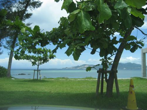 名護湾の見えるキャンプ地で、車を停め、しばし、周りの景色に見惚れています