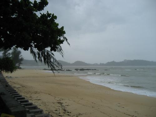 台風の後に発生する、ビッグウェーブに、サーファーが集まっています