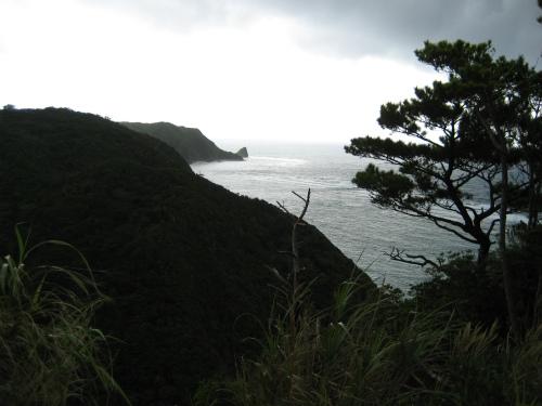 ジュゴンの見える丘