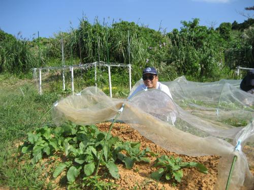 片山さんの農園
