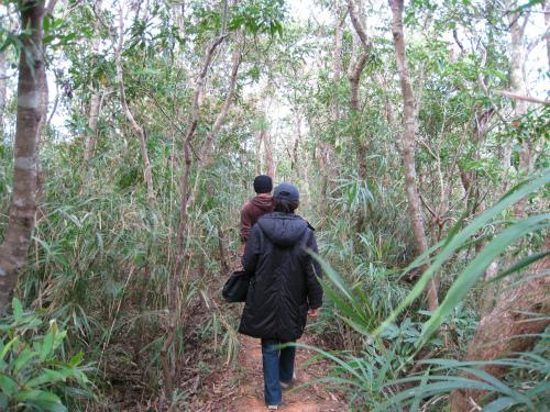 ビオスの丘からの帰り道