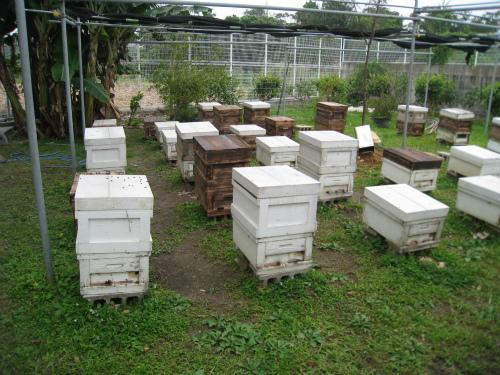 小浜養蜂場