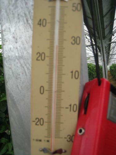ビニールハウスの中の温度は26度