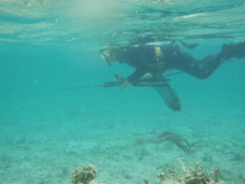 恩納村ムーンビーチ沖の水中写真
