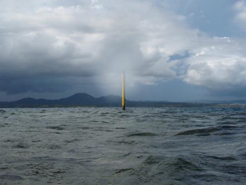 宜野座の近江の水中写真