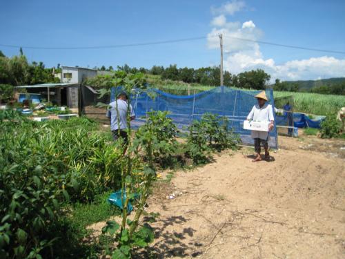 松田正さんのお友達の畑