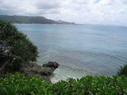 琉球大学の熱帯生物圏研究センター瀬底実験所