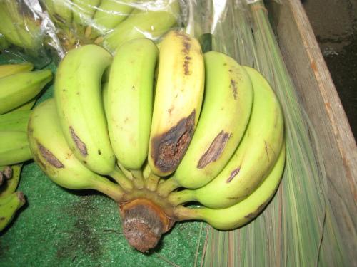 沖縄産のバナナ