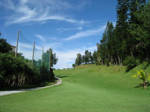 アロハゴルフ