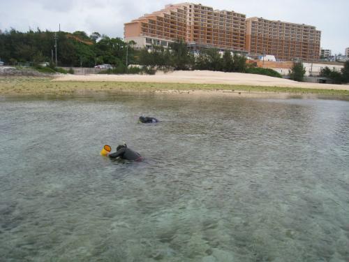 冨着沖で潮干狩り
