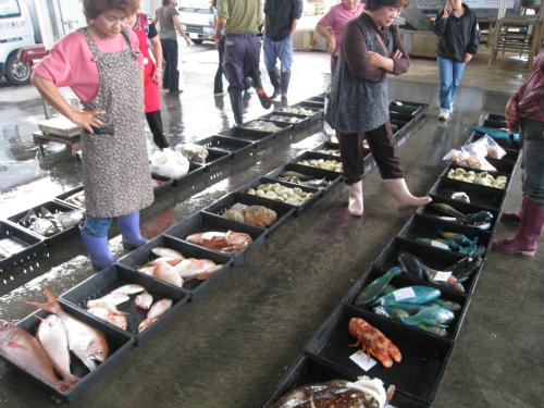 漁業市場の競り