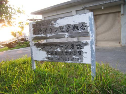 山城興善さんの畑