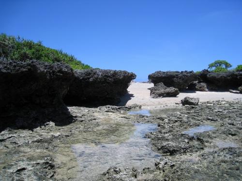 南浮原島でシュノーケリング