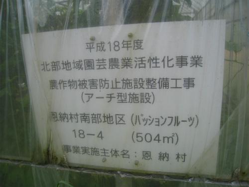 パッションフルーツ畑