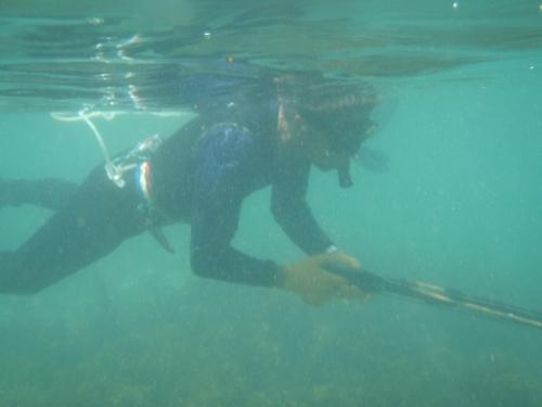 宇堅ビーチの水中写真