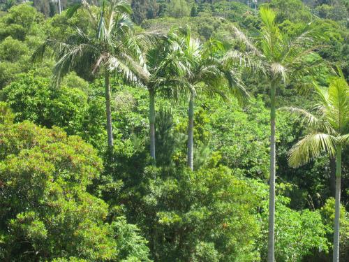 沖縄県立石川少年自然の家