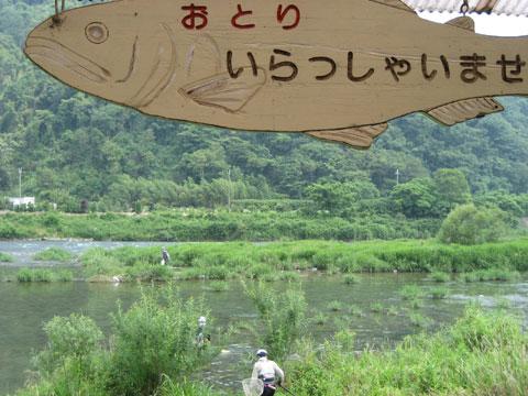 松葉博雄のいい写真撮りたいな:「鮎おとり」
