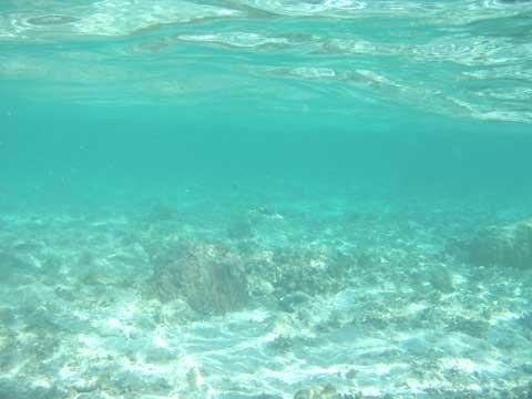 松葉博雄のいい写真撮りたいな:「揺れる心のように、沖縄の海の底に映る波紋」