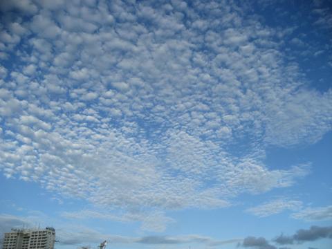 松葉博雄のいい写真撮りたいな:「青い空、白い雲、鳳の羽ばたき」