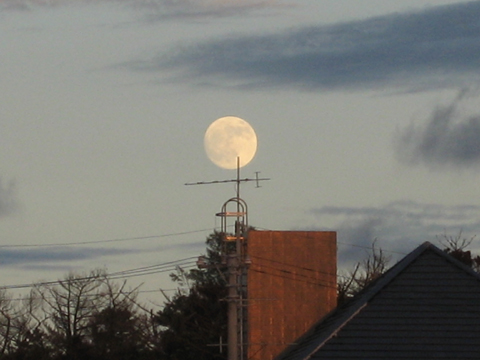 松葉博雄のいい写真撮りたいな:「南国の夜は、月の出る時から始まり、沈むときに宴は終わる」