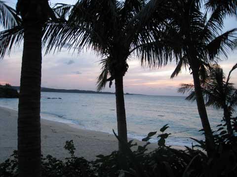 松葉博雄のいい写真撮りたいな:「誰もいないムーンビーチには、夏の思い出を椰子の葉が囁きあっています」